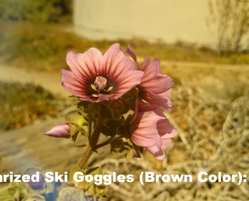 Polarized Ski Goggle: Blown Color - Flower Video